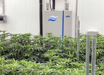 Peninsula Gardens Improves Cannabis Cultivation with Condair RS Series