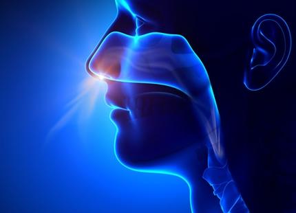 Nasal mukociliär transport hos friska individer är långsammare vid inandning av torr luft