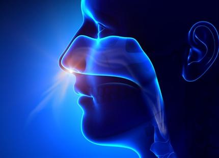 Når sunde forsøgspersoner indånder tør luft er den nasale mukociliære transport langsommere