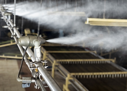 Humidifiers enhance fermentation at Bajrang Tea, India