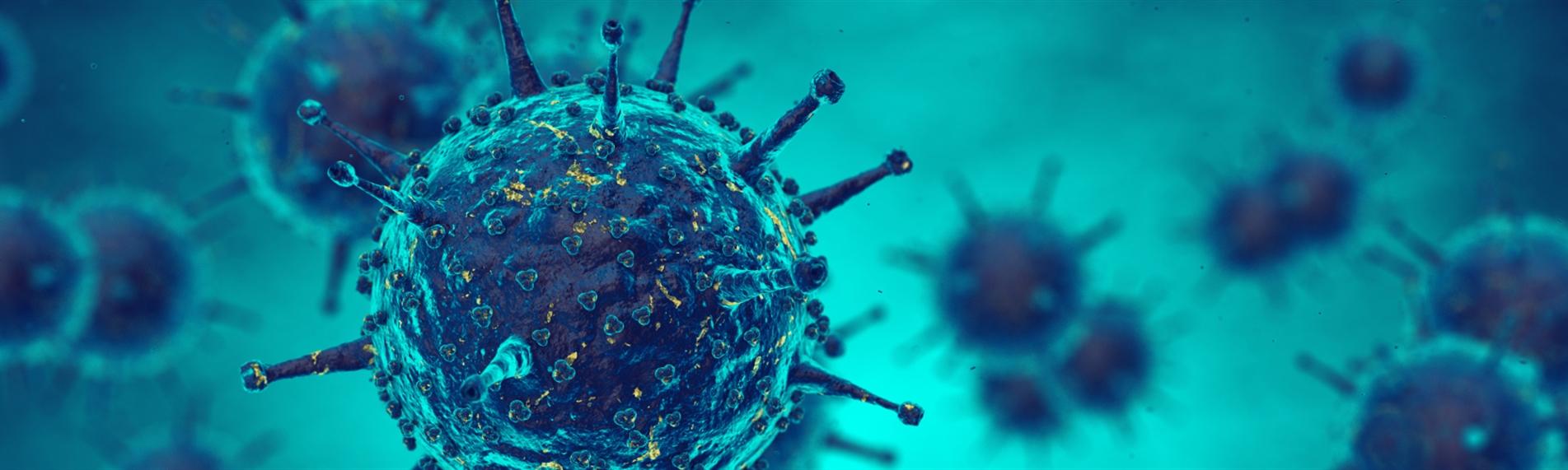 Influenzavirus kan bekæmpes med den rette luftfugtighed