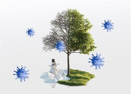 Saisonalität der respiratorischen viralen Infektionen
