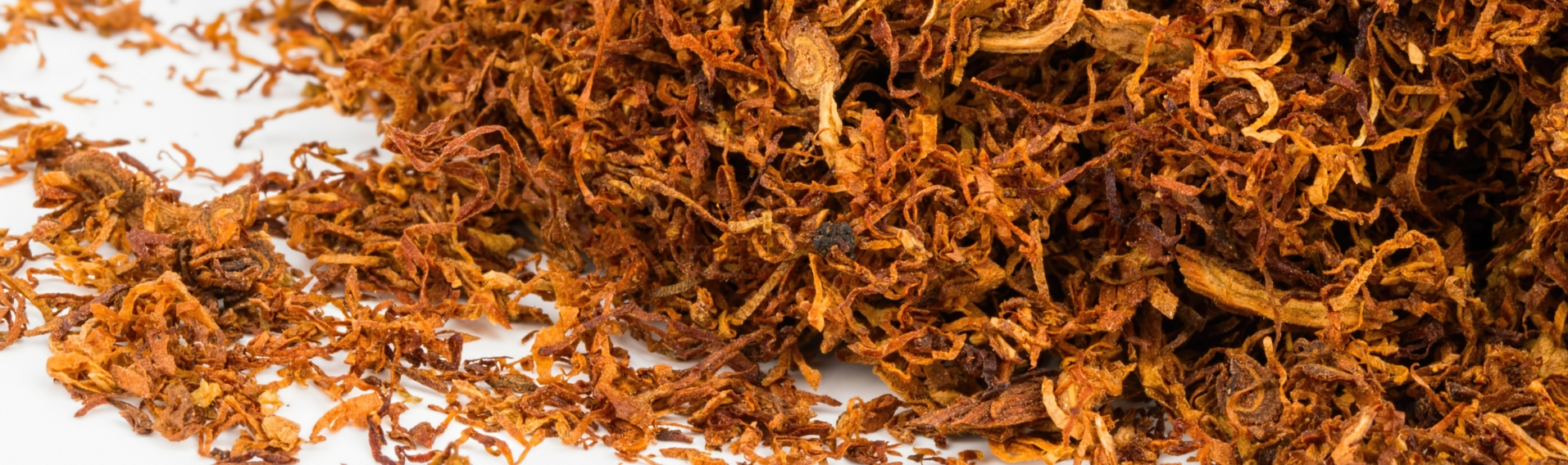 Close-up of humidity controlled dried tobacco