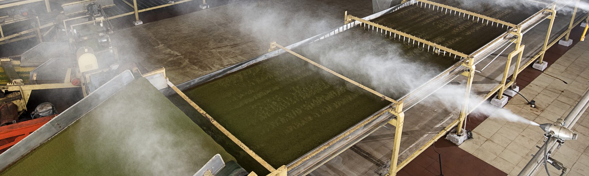 Tea production humidification & humidity control