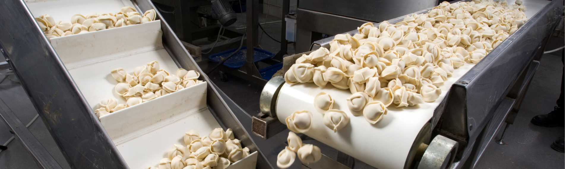 Humidifying a Food Processing Plant for Pasta