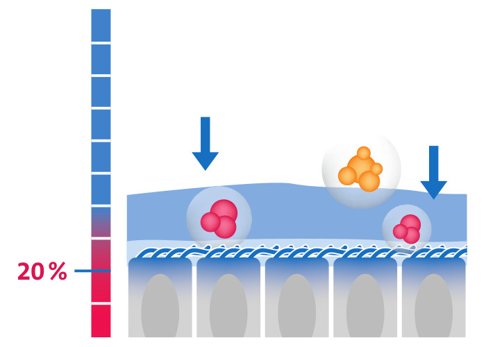 Dry airway mucous membranes