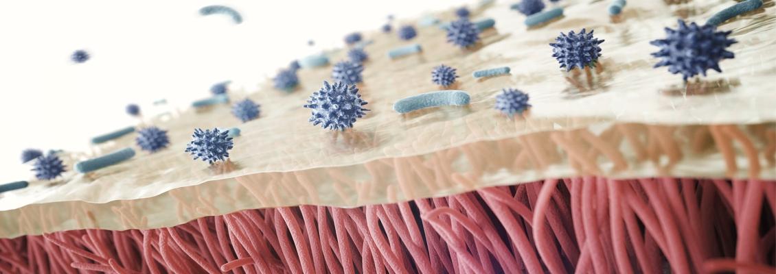 Luchtbevochtiging voor het immuun systeem