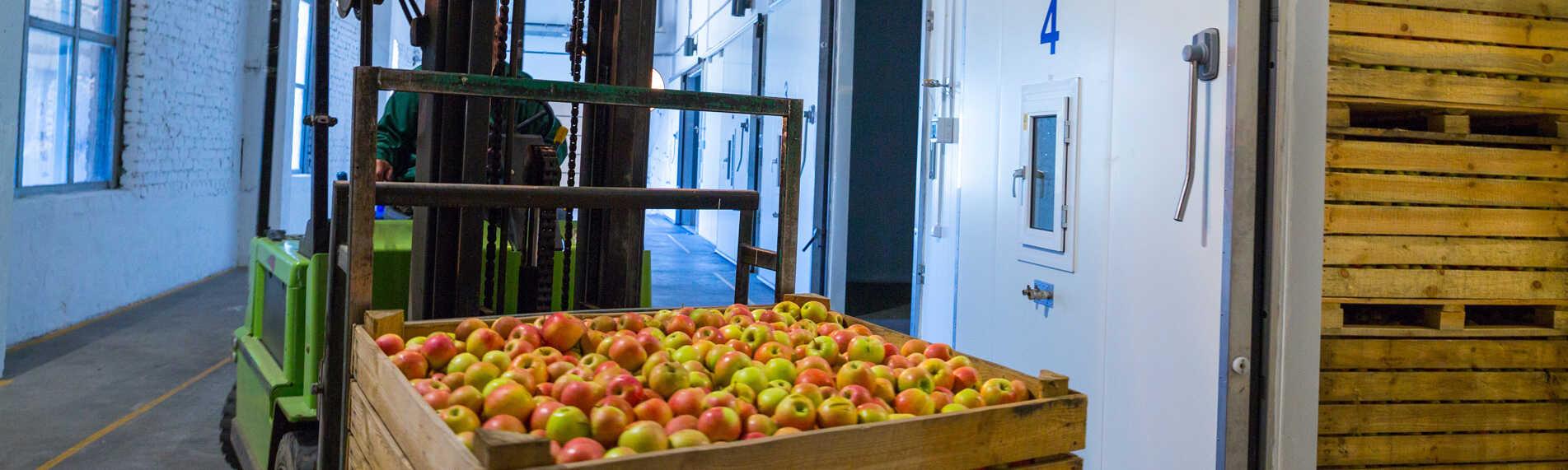 Få optimale forhold for fødevarer i kølerum og koldlager med korrekt befugtning