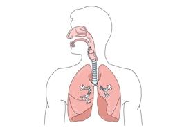 Schutz des Atmungstraktes durch Direktraum-Luftbefeuchtung im Büro