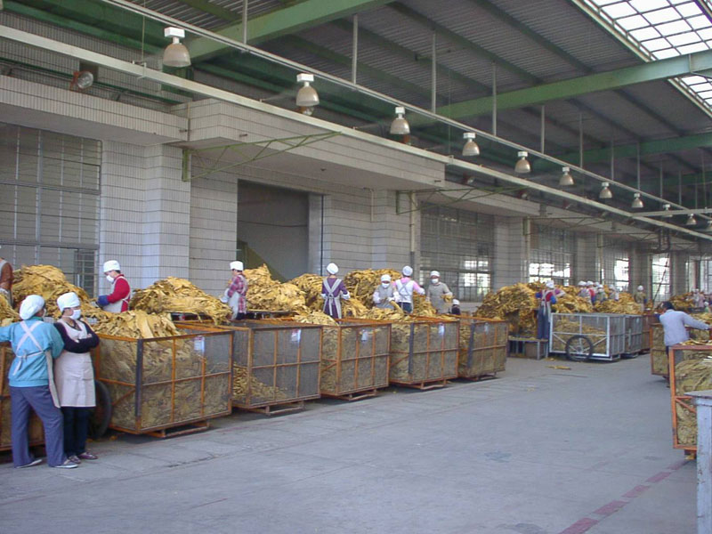 Tobacco manufacturing humidity control