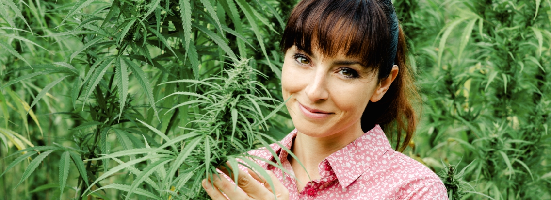 Women with cannabis plants