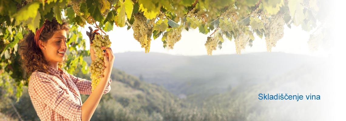 Skladiščenje vina