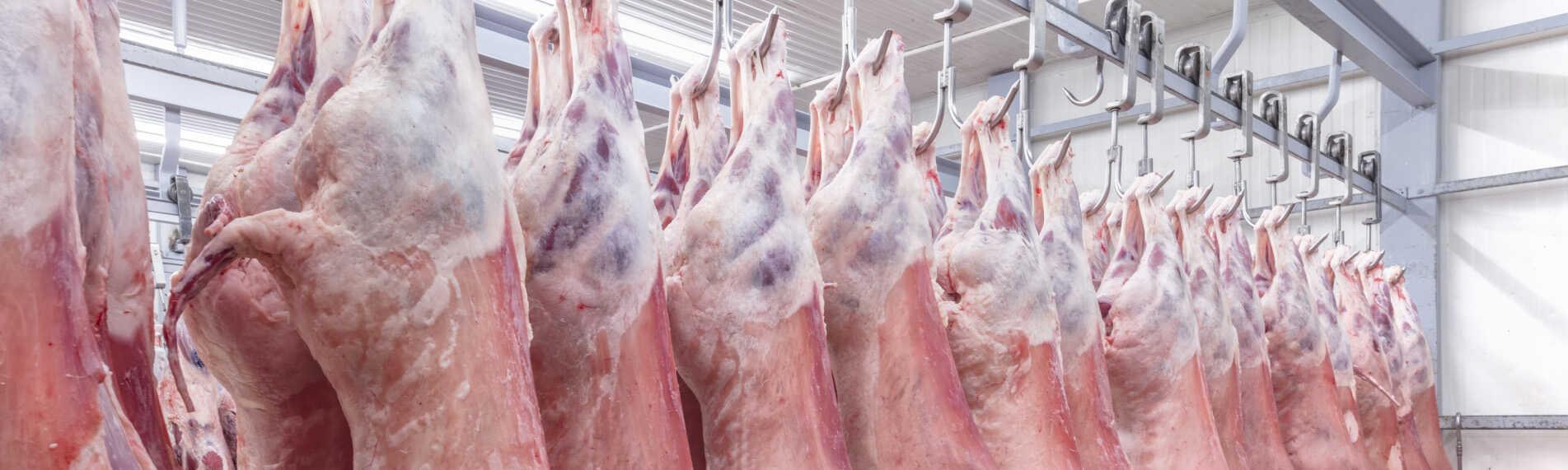 Slagterier reducerer vægttabet af kød med den rette luftfugtighed