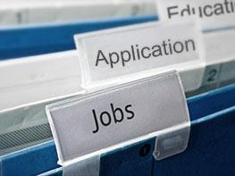 Pracovní místa a kariéra